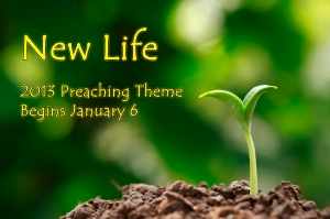 2013 New Life Preaching Theme copy