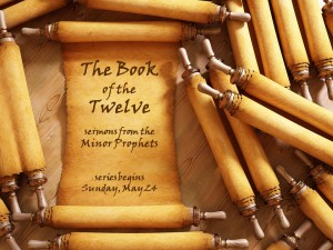 book of 12 sermon series